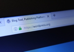 WordPress website in the address bar of a browser.