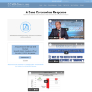 Custom WordPress website design for COVID Sanity home page in Twin Cities, MN