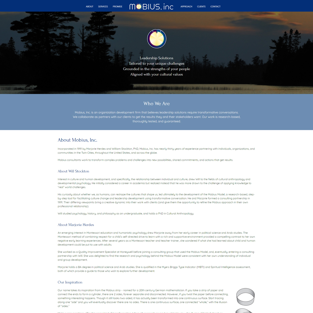 Custom Trustdyx website design for Mobius Inc home page in Minnesota